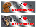 I Love My Dachshund Rectangular Magnetic Bumper Sticker