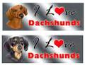 I Love My Dachshund Rectangular Magnetic Bumper Sticker