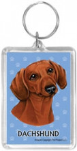 Blue Pawprint Keychain Ring with Red Dachshund