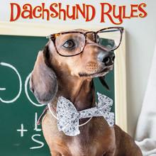 Hardcover Book - Dachshund Rules