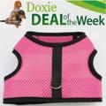 FREE Shipping - Save $2! - PINK MESH - Custom Dachshund Walking Harness Vest