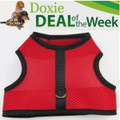 FREE Shipping - Save $2! - RED MESH - Custom Dachshund Walking Harness Vest