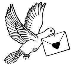dove-web.jpg