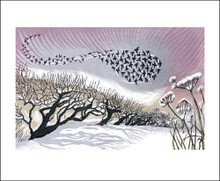 Midwinter Starlings - Greeting Card