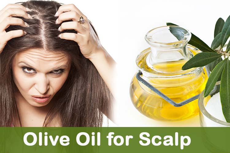 Olive Oil For Scalp The Olive Tap