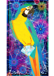 Wearable Art - the vibrant & versatile Macaw Silk Scarf