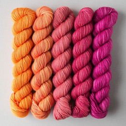 Sweet Georgia Party of Five Mini-Skeins (30st)