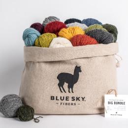 Blue Sky Fibers Woolstok Light Big Bundle