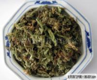 shenjincao-yinpian-l.jpg