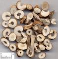 Mudanpi ( Tree Peony Root)---牡丹皮(powder100g/bottle)
