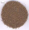 Zisuzi (Basil seed /Perilla Fruit)---紫苏子(powder100g/bottle)