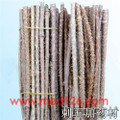 Ciwujia (Many-prickle Acanthopanax Root)---刺五加