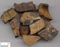 Guijia (Tortoise Shell)---龟甲/龟板
