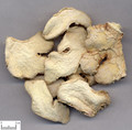 Ganjiang( Dried Ginger)---干姜 (powder100g/bottle)