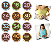 Sticky Bellies Pregnancy Milestone Stickers