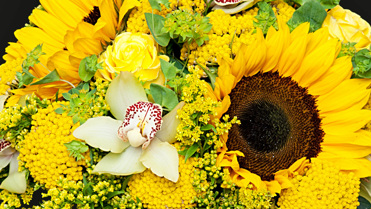 yellow-flower-station.jpg