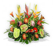 Tropical flower arrangement - proteas, three large heliconias, pincushions, calla lilies and anthuriums