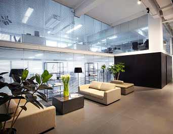 Plants In Office