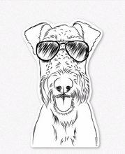 Airedale Terrier-Andy wears Aviators