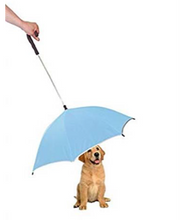Protect your dog from rain and protect your nose from the wet dog smell!