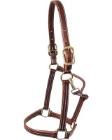 Halter, British Leather (Walsh 5100)