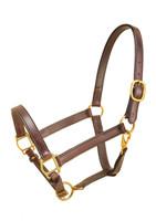 "Halter, Leather Cob/Sm Horse 1"" (183)"