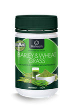 Lifestream NZ Barley & Wheat Grass