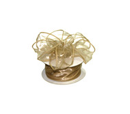 2.5 inch Wired Organza Ribbon - 10 yds