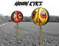 Portek Hawk Eye Bird Scarer
