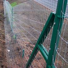 HT17/194/8 50m Badger Fencing