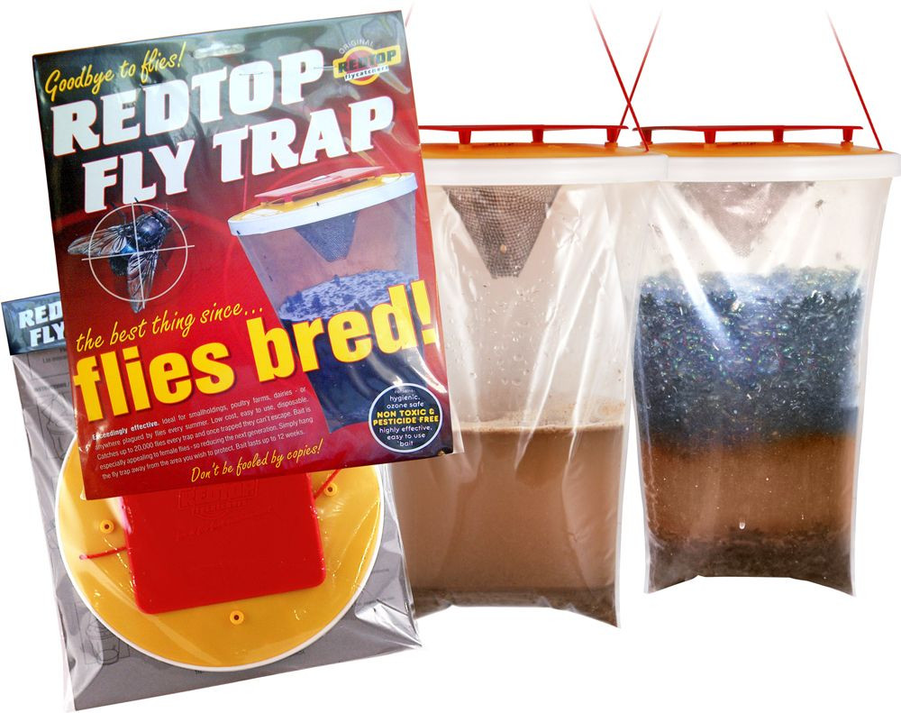 Redtop Fly Trap