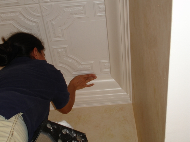 damaris jara is caulking ceiling tiles - Decorative Ceiling Tiles