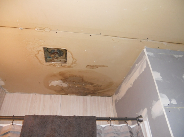 Ugly Ceiling Contest 2011