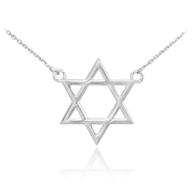 14K White Gold Star of David Necklace