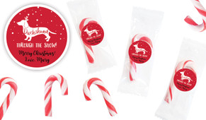 Dachshund Through The Snow Personalised Mini Candy Canes