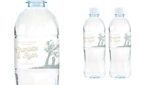 Proposal Wedding Water Bottle Stickers (Set of 5)