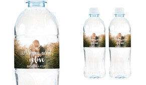 All You Need Is Love Wedding Water Bottle Stickers (Set of 5)