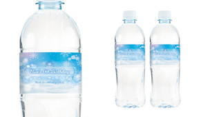 Ice Princess Birthday Birthday Water Bottle Stickers (Set Of 6)