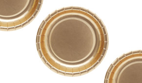 Gold Metallic Party Plates (12 Pack)