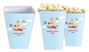 Bear Air Plane Personalised Popcorn Boxes