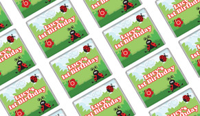 Lady Bug Birthday Mini Chocolates