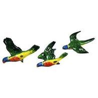 STUDIO AUS flying parrot