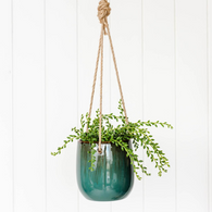 RAYELL saxon hanging planter