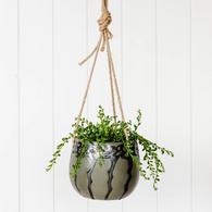 RAYELL pinxton hanging planter