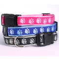 Guardian Gear® Two Tone Paw Print Collars