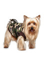 Urban Pup Forest Camouflage Bodywarmer