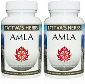 Amla Full Spectrum CO2 Extract  500 mg - 240 Vegetarian Capsules (2 pack - 120ct/ea) (OUT OF STOCK)