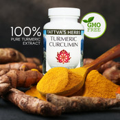 Turmeric Curcumin Full Spectrum Co2 Extract  500 mg. 240 Vcaps (2 Pack - 120 ct./ea) - Hexane  and Toxin Free