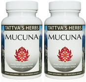 Mucuna  Holistic Extract - Non GMO 240  V caps 500 mg.