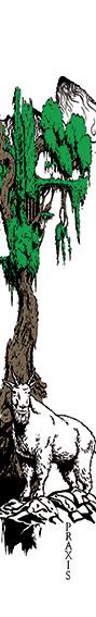 Ibex Ski Graphic
